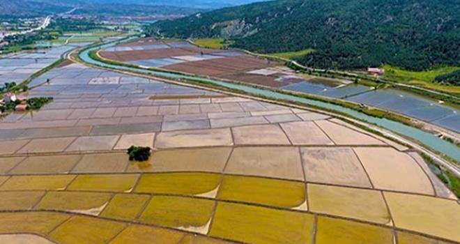 Çorum'da 151 bin dekar tarım arazisi sulandı