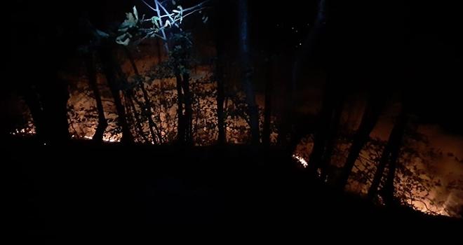 Ordu'daki örtü yangınlarında 70 dönümlük alan zarar gördü