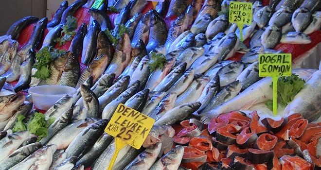 Samsun'da Balıkçılar yeni sezondan umutlu