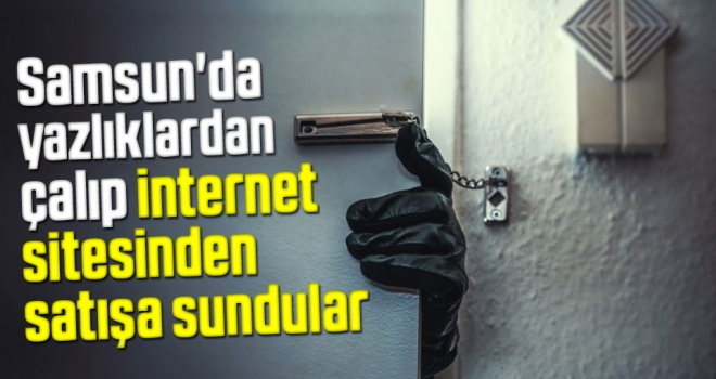Samsun'da Yazlıklardan Çalıp İnternet Sitesinden Satışa Sundular
