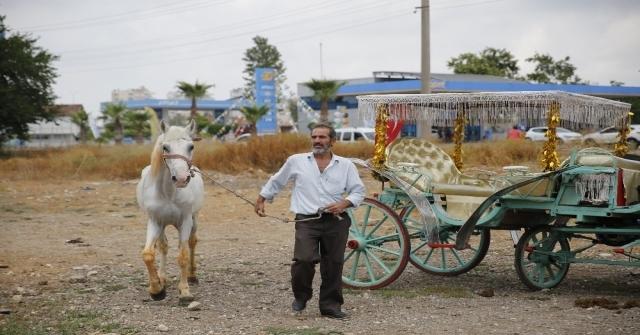 Antalyada Fayton Dönemi Sona Erdi, Atlar Hayvanat Bahçesine Teslim Edildi