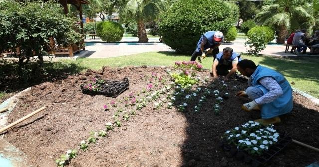 Haliliye Belediyesi İlçeyi Çiçeklerle Süslüyor
