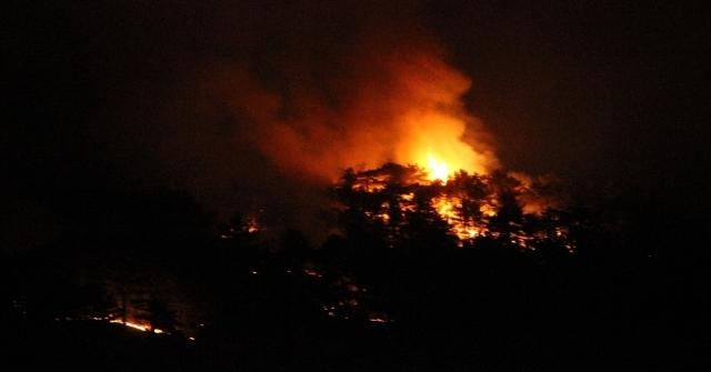 Eskişehirdeki Orman Yangınını Söndürme Çalışmaları Devam Ediyor