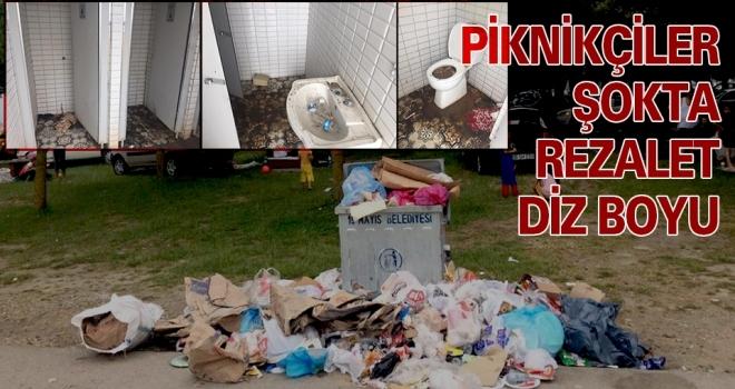 Piknikçiler Şokta Rezalet Diz Boyu