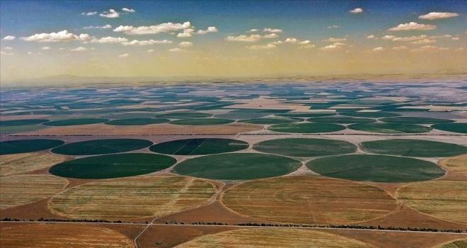 Konya'nın devasa dairesel tarlaları gökyüzünden görüntülendi3