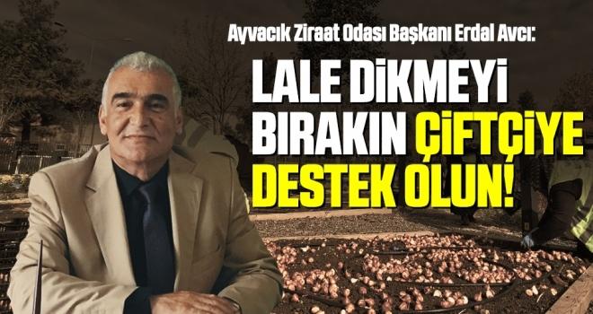 Ayvacık Ziraat Odası Başkanı Avcı: Lale dikmeyi bırakın çiftçiye destek olun!