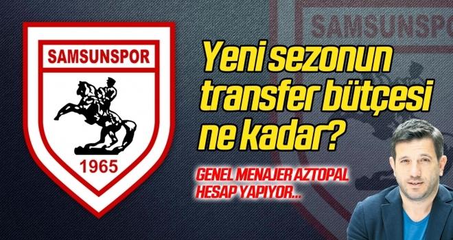Samsunspor'un yeni sezonda transfer bütçesi ne kadar olacak?
