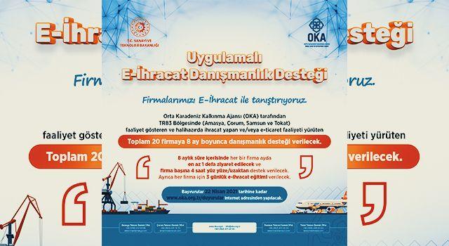 OKA uygulamalı e-ihracat danışmanlık desteği başvuruya açıldı