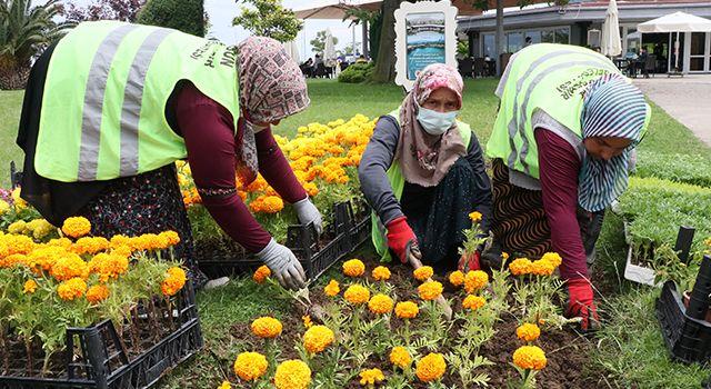 Çöpten elde edilen enerjiyle ısıtılan serada yetiştirilen çiçekler şehri süslemeye başladı