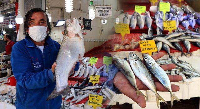 Balıkçı esnafı dertli
