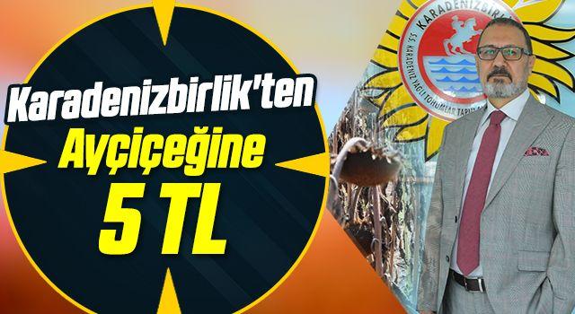 Karadenizbirlik'ten ayçiçeğine 5 TL