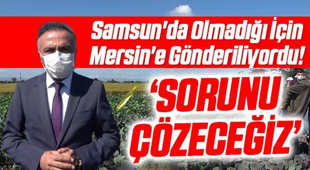 Samsun'da Olmadığı İçin Mersin'e Gönderiliyordu! Daire Başkanı Dilber: Sorunu Çözeceğiz