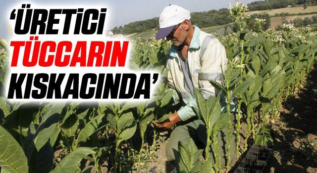 CHP Bafra İlçe Başkanı Vahit Perçin: Üretici tüccarın kıskacında