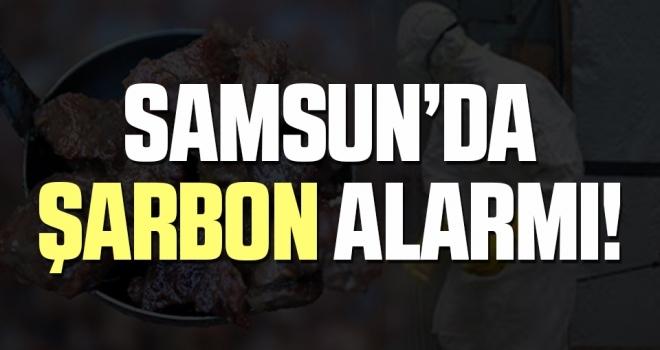 Samsun'da Bir Kişiye Kurban Etinden 'Şarbon' Bulaştı!