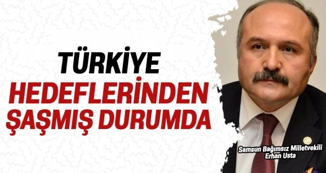 Erhan Usta: Türkiye HedeflerindenŞaşmış Durumda