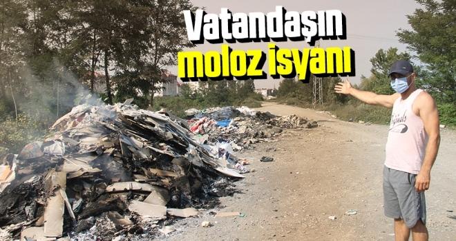 Samsun'da VatandaşınMoloz İsyanı