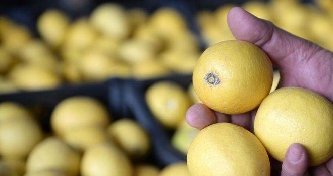 İki bakan arasında limon ihracatı 'çalımı'