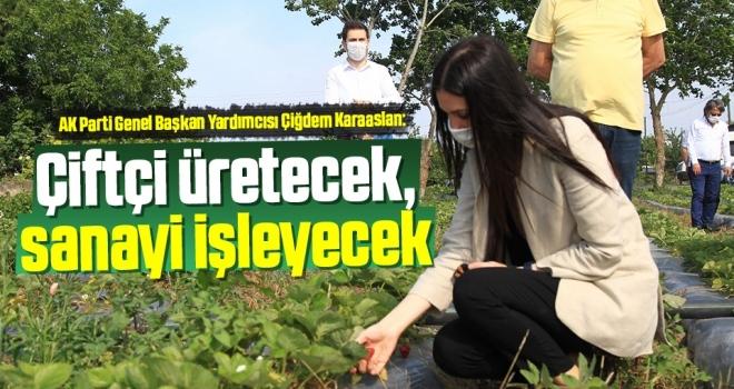 Milletvekili Çiğdem Karaaslan: Çiftçi Üretecek,Sanayi İşleyecek