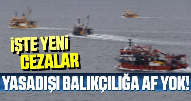 Yasadışı balıkçılığa af yok!