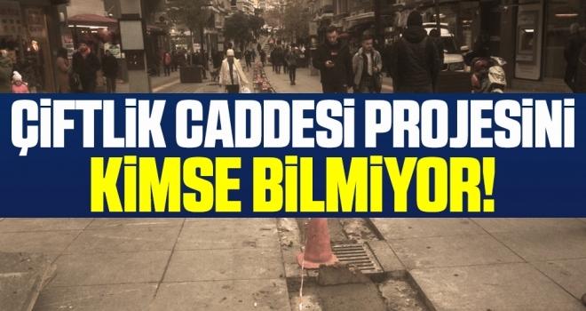 Çiftlik Caddesi Projesini KİMSE BİLMİYOR!