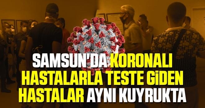Samsun'da Araştırma'da şok eden görüntüler