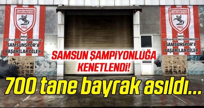 Şehir şampiyonluğa kenetlendi, 700 tane Samsunspor bayrağı asıldı