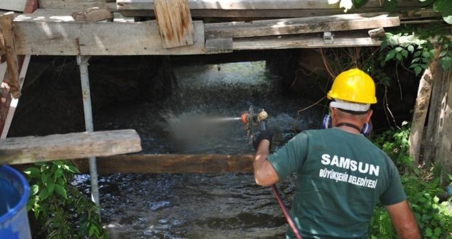 Samsun'da günde 2 bin metrekare alanda larva mücadelesi yapılıyor