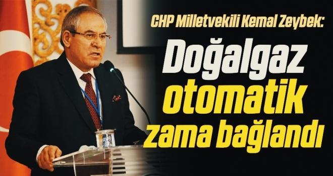 CHP Milletvekili Kemal Zeybek: Doğalgaz otomatik zama bağlandı