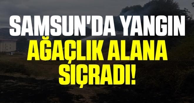 Samsun'da Yangın Ağaçlık Alana Sıçradı!