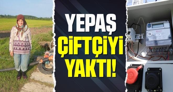 Samsun'da YEPAŞ Çiftçiyi Yaktı
