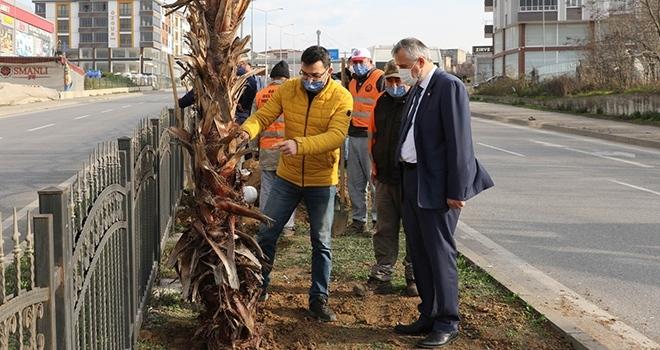 """Başkan Kılıç: """"İnsanlar Bafra'mızın dış görünümü ile ilgili güzel intibalara sahip olsun istiyoruz"""""""