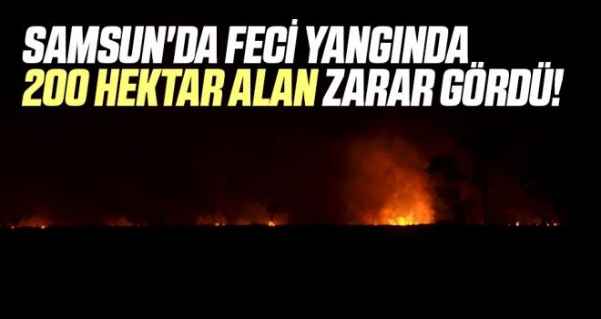 Samsun'da Feci Yangında 200 Hektar Alan Zarar Gördü!