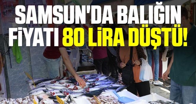Samsun'da Balığın Fiyatı 80 Lira Düştü!
