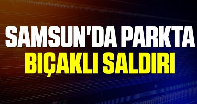 Samsun'da parkta bıçaklı saldırıda yaralandı