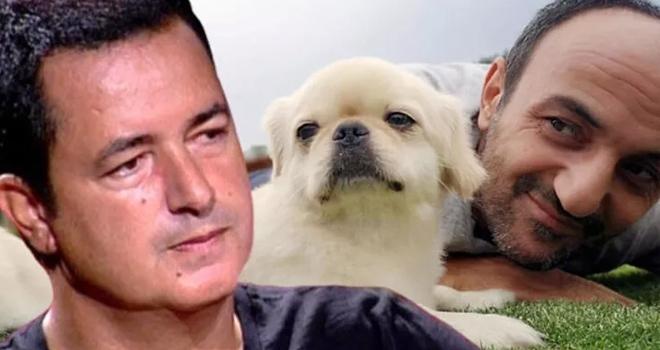 Acun Ilıcalı açıkladı! Arkadaşları Ersin Korkut'a Mess'e benzeyen köpek aldı!
