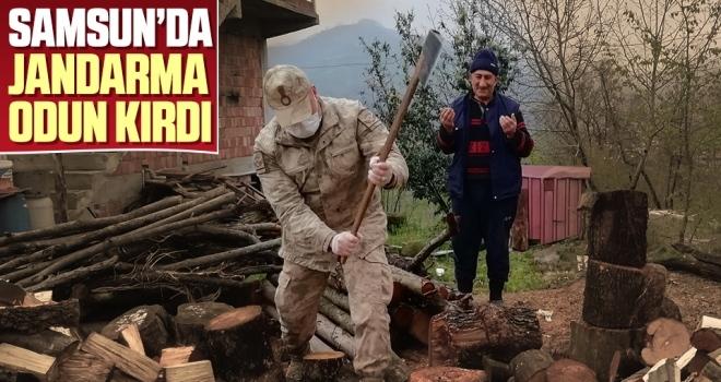JandarmaOdun Kırdı