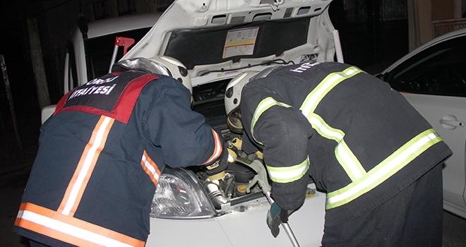 Aracın motoruna sıkışan kedi kurtarıldı