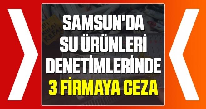 Samsun'da Su Ürünleri Denetimlerinde 3 Firmaya Ceza