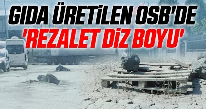 Samsun'da Gıda üretilen OSB'de 'REZALET DİZ BOYU'