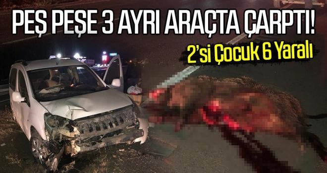 Yola çıkan domuz 3 ayrıkazaya neden oldu:6 yaralı