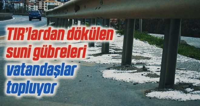 Samsun-Ankara kara yolunda tırlardan dökülen suni gübreleri vatandaşlar topluyor