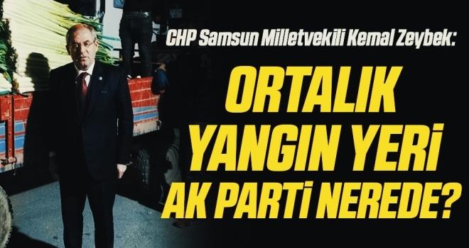 CHP Samsun Milletvekili Kemal Zeybek: Ortalık yangın yeriAK Parti nerede?