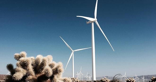 Gelecek Yıllarda Rüzgar Daha Da Sert Esecek!