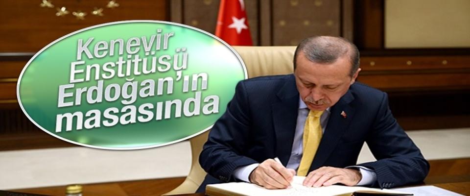 kenevir-enstitusu-erdogan-in-masasinda