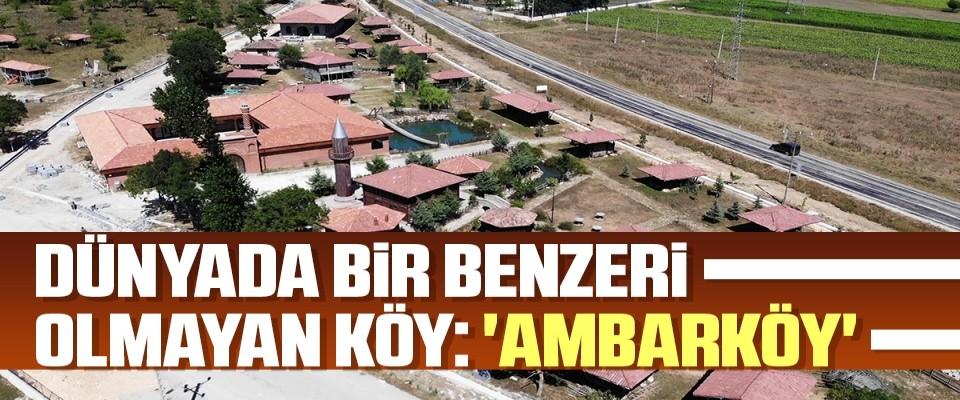 Dünyada bir benzeri olmayan köy: 'Ambarköy'