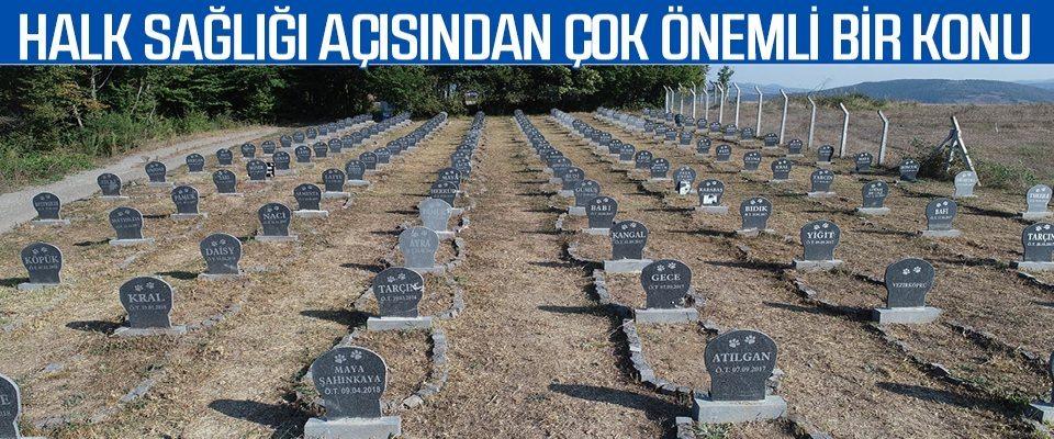 Hayvan Mezarlığı Halk Sağlığı Açısından Çok Önemli Bir Konu
