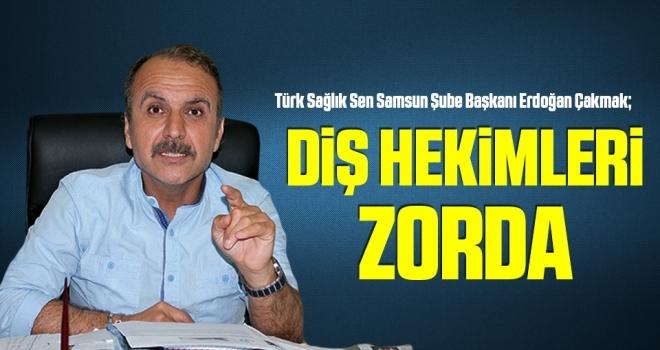 Türk Sağlık Sen Şube Başkanı Çakmak: Diş hekimleri zorda