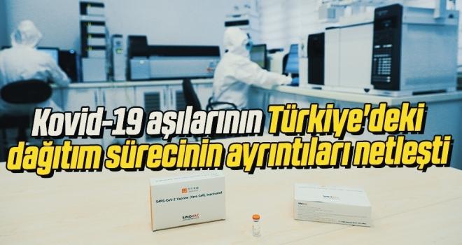 Kovid-19 aşılarının Türkiye'deki dağıtım sürecinin ayrıntıları netleşti