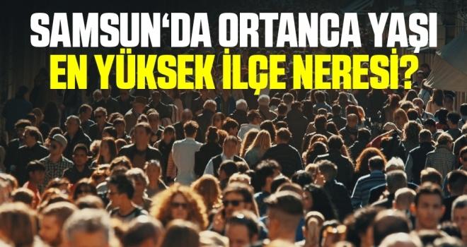 Samsun'da Ortanca Yaşı En Yüksek İlçe Neresi?