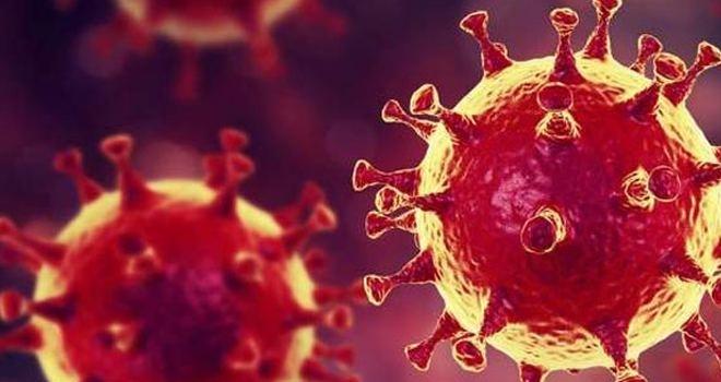 Koronavirüs Hakkında Çıkan Haberlerin Sayısı 21 Milyonu Aştı